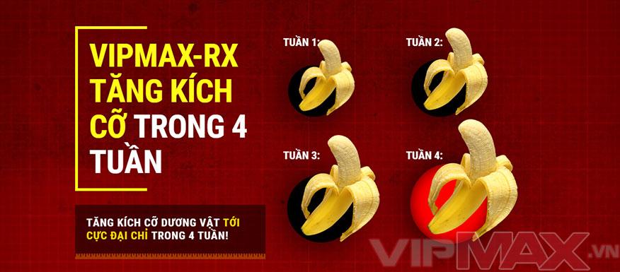 vipmax-rx-gioi-thieu-2